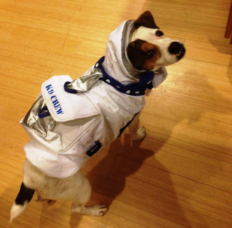 Trixie Astronaut